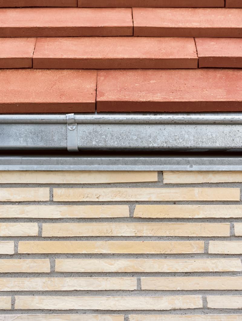 falkonergaardens-gymnasium-1